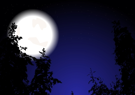 Night wood and the full Moon  Vector