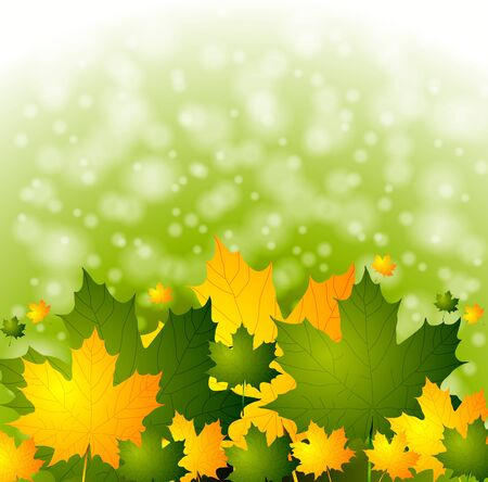 Autumn background with green and yellow leaves  Vector