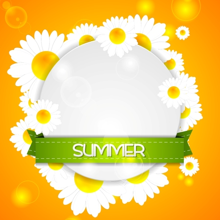 camomiles: Summer design. Camomiles and ribbon on white circle