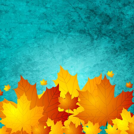 mur grunge: Autumn maple leaves on turquoise grunge wall texture. Vector card background
