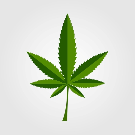 leaf line: Green cannabis leaf icon design. Vector background