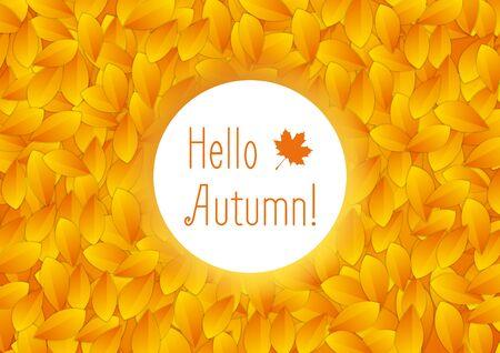 fall leaves on white: Orange autumn leaves and white circle background. Bright autumn fall season vector design