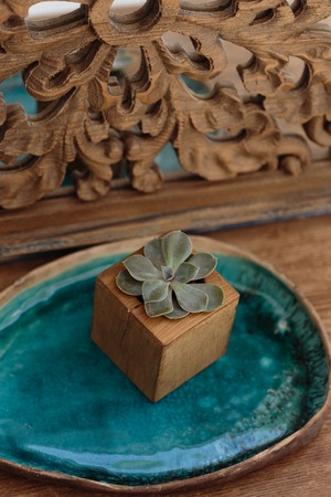 miror: Succulent in wooden box placed on ceramic tray of turquoise color in front of miror decorated with carved wood