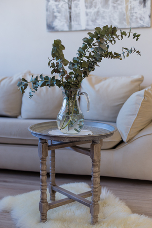 Glass jug vase with branches of decoratory eucalyptus in it placed on light grey rustic table against biege sofa
