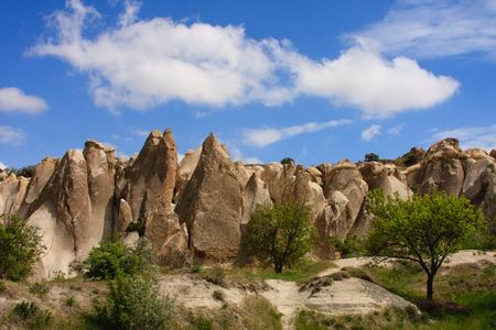 horizontal shot of fairy chimneys in valley of Cappadocia shot on sunny dat