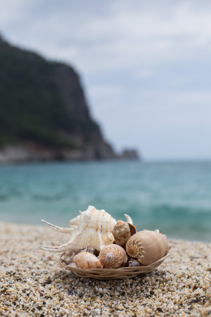 Vertical shot with a plate with seashells placed on small pebble shot against blurred background of sea and rock
