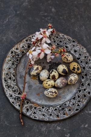 Spring table setting in black and dark gray colors with blossoming almond branch and quail eggs