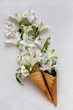 Spring or summer concept. Flowers in the ice-cream cones.