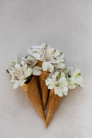 Summer concept. Three ice-cream cones with white flowers in it.