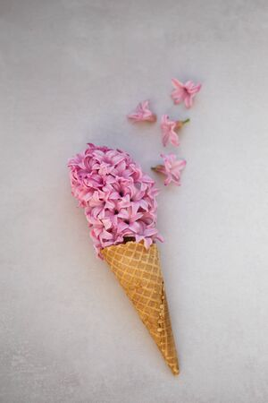 Summer or spring concept. Ice-cream cone with hyacinthus.