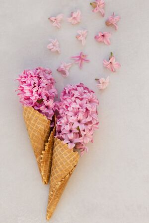 Summer or spring concept. Ice-cream cones with pink hyacinthus.