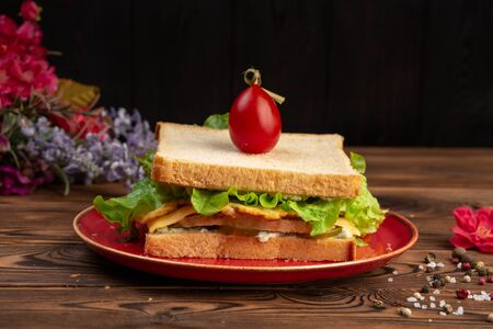 sandwich with chicken two sandwiches, chicken fillet, tamagoyaki, lettuce, mozzarella, tartar sauce, lightly salted cucumbers, cherry in a red plate on a wooden background Stockfoto