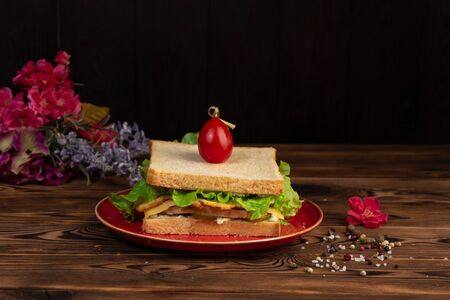 sandwich with chicken two sandwiches, chicken fillet, tamagoyaki, lettuce, mozzarella, tartar sauce, lightly salted cucumbers, cherry in a red plate on a wooden background Banco de Imagens