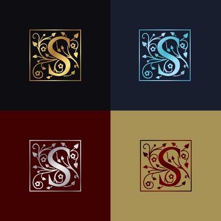 Letter S Decorative Logo Illustration