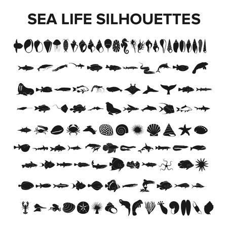 Sea life collection - vector illustration Çizim