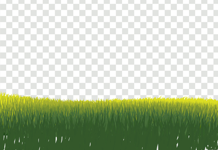 Green Grass Border, Isolated on Transparent Background, With Gradient Mesh, Vector Illustration