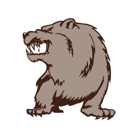 wild bear cartoon mascot. Animal cartoon character Vector Illustration.