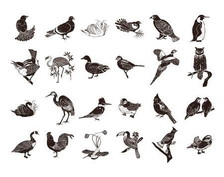 Vogels collectie clipart illustratie.