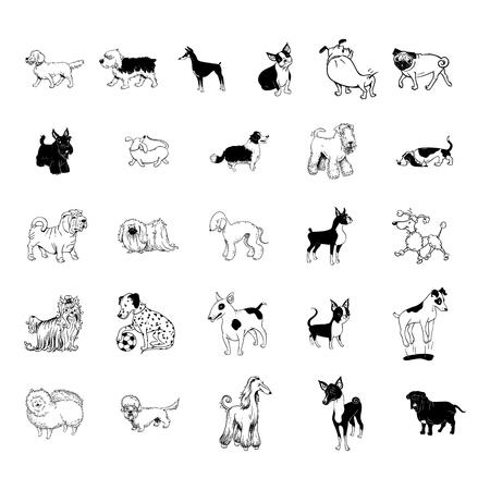 犬コレクション クリップアート  イラスト・ベクター素材