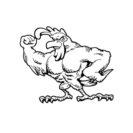 Muscular chickens Animal cartoon character vector Illustration.
