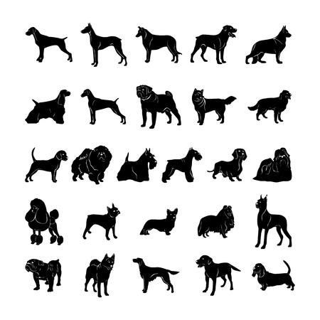 Illustrazione vettoriale silhouette cane Archivio Fotografico - 81123313
