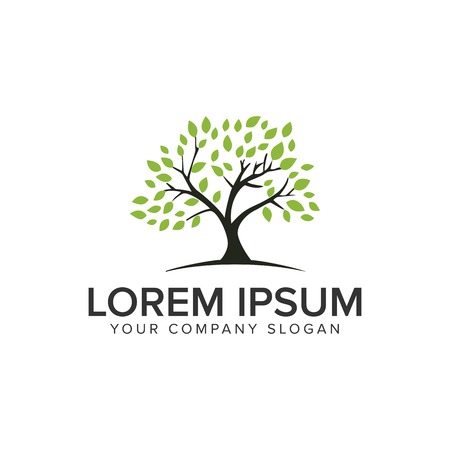 Tree logo design concept template.