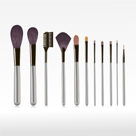 set of brushes for makeup isolated   Vector