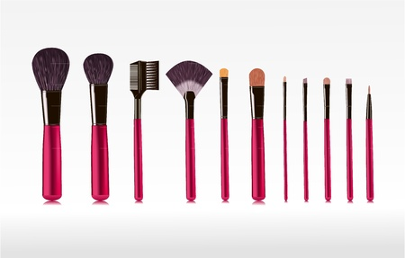 makeup powder: set of brushes for makeup isolated  vector