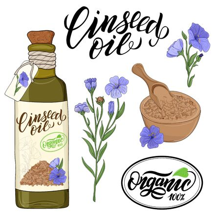 bottle of linseed oil and flax flower elements Banco de Imagens
