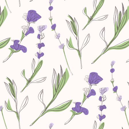 lavender flowers background hand drawn illustration. Vector doodle style. Иллюстрация