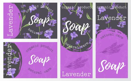 Set packaging of natural soap with lavender. Organic cosmetic natural soap. Vector hand drawn illustration.