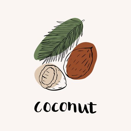 Coconut black and white vector hand draw sketch with colored spots. Hand lettering text. Coconut icon design template.