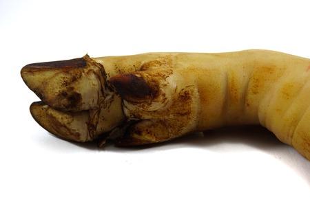 Legs of pork, white background Фото со стока