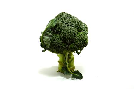 Broccoli on a white background