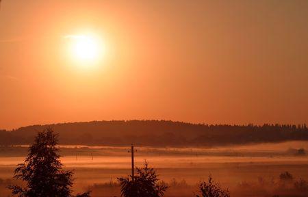 Sunrise near forest in summer 2009 photo