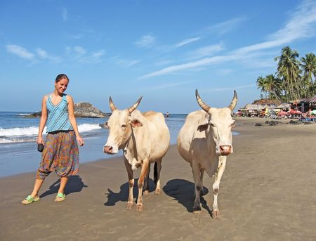 Young woman and cow twins at the Goa beach photo