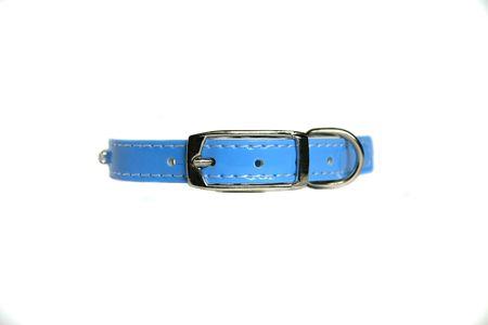 bulwark: leather animal collar isolated on white