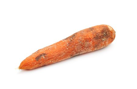 Old carrot isolated photo