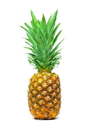 Pineapple isolated on white background Stock Photo - 7163308