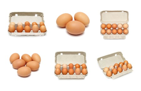eggs set isolated on a white background photo
