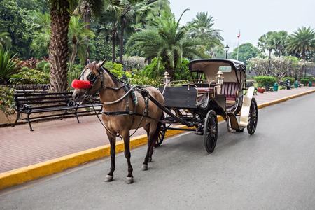 イントラムロス、マニラ、フィリピンでキャリッジを持つ馬