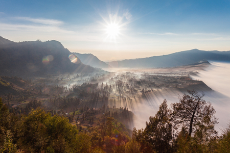 indonesia: Sunrise in the forest near Bromo volcano, Java island, Indonesia