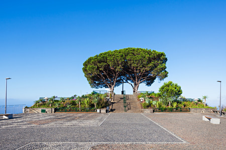 viewpoint: Barcelos viewpoint in Funchal, Madeira island, Portugal