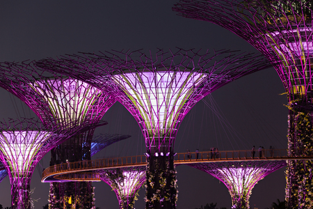 hectares: SINGAPORE - OCTOBER 15, 2014: Gardens by the Bay is a park spanning 101 hectares in central Singapore.