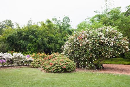 SINGAPORE - OCTOBER 17, 2014: The Singapore Botanic Gardens is a 74-hectare botanical garden in Singapore.