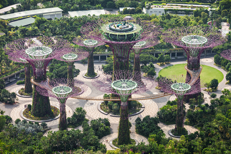 hectares: SINGAPORE - OCTOBER 18, 2014: Gardens by the Bay is a park spanning 101 hectares in central Singapore.