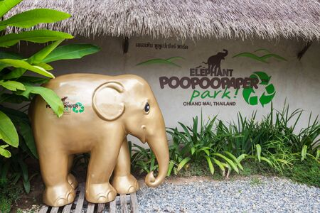 poo: CHIANG MAI, THAILAND - NOVEMBER 07, 2014: Elephant Poopoopaper Park is an museum park focused on introducing involved in making paper products from elephant poo.