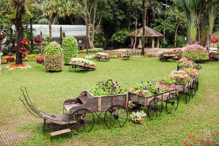 fa: MAE FA LUANG, THAILAND - NOVEMBER 04, 2014: Mae Fah Luang Garden, Northern Thailand.