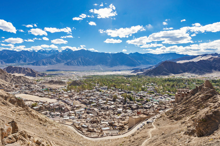 tibetan house: A lot of local houses in the himalayan desert, Leh