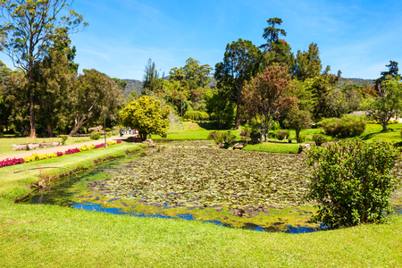 queen victoria: NUWARA ELIYA, SRI LANKA - FEBRUARY 22, 2017: The Victoria Park is a public park located in Nuwara Eliya, Sri Lanka. The park was formally named in 1897 to commemorate Queen Victoria. Editorial